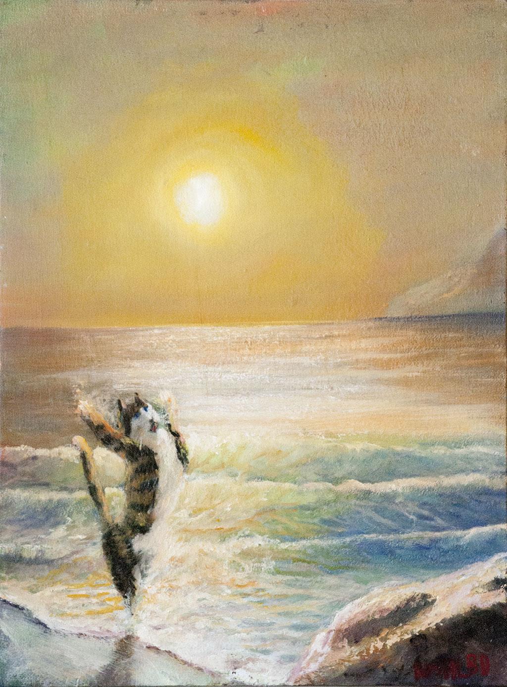 Gatto balla al mare
